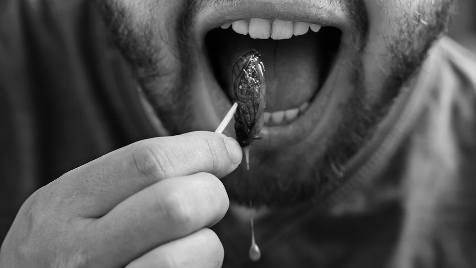 A close-up of a man putting a cooked cicada into his mouth