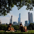 a photo of people sunbathing on a hot summer day in Central Park in New York City
