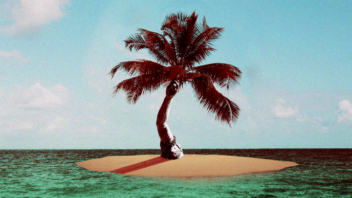 An illustration of a palm tree on a small island