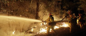 Firefighters hose down a burning forest.