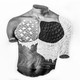 A man's torso in black and white collaged together from different textures
