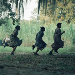 a group of people running on a green plantation