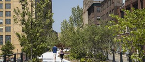 People walk along a new elevated park that winds through a historic urban area.