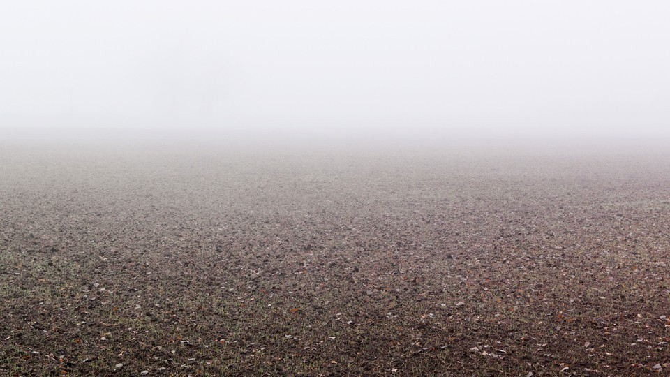 An image of soil stretching into the horizon