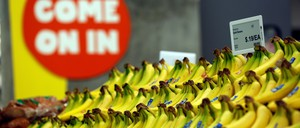 The price of bananas is displayed on a digital price tag at a 365 by Whole Foods Market grocery store.