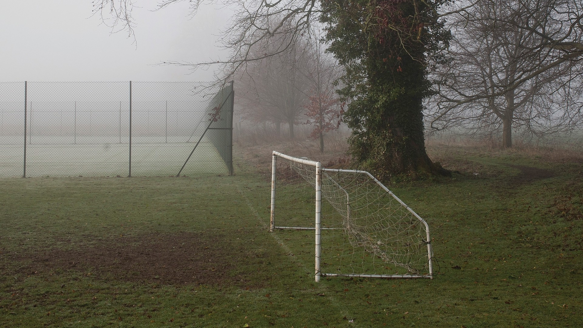 photograph of a soccer net