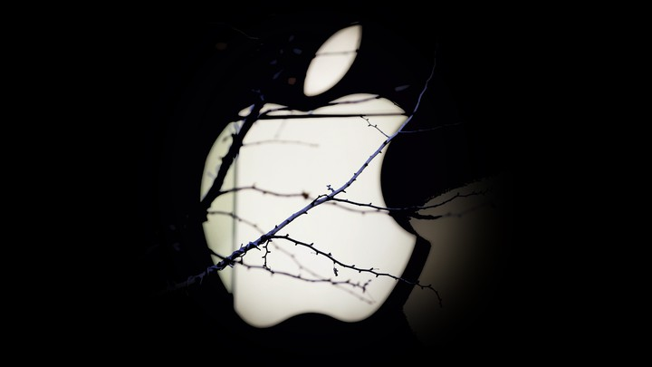 Apple logo seen behind branches