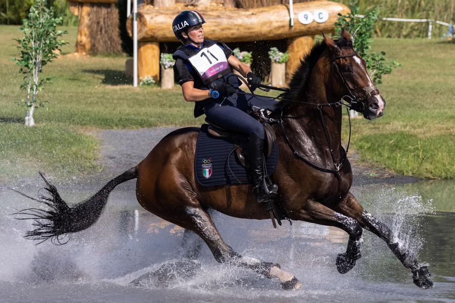 A rider and horse navigate a water hazard on an obstacle course.