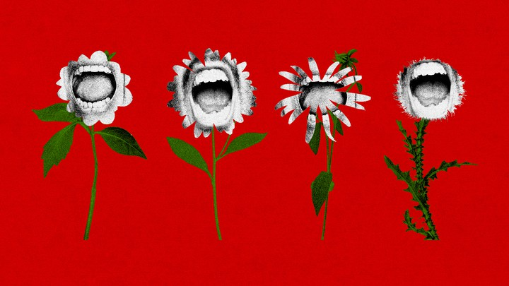 An illustration of flowers with shouting mouths