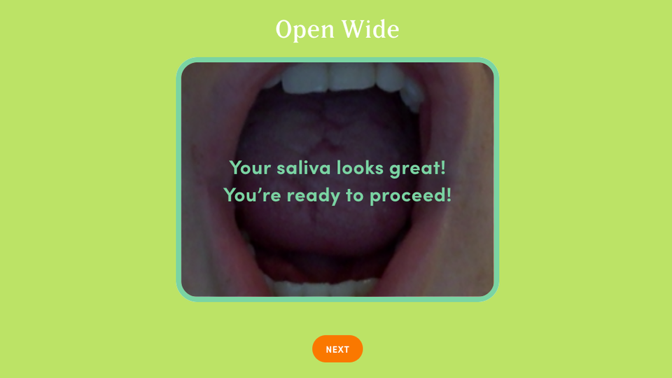 """A screenshot of a web page with a photo of a mouth that says, """"Your saliva looks great! You're ready to proceed!"""""""