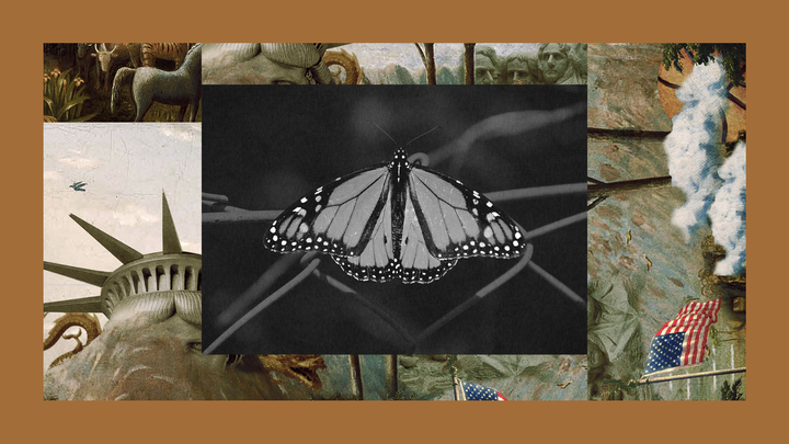 A monarch butterfly rests on a wire fence set into The Experiment's image template.