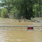 A barbed-wire fence encircles a pit of muddy-looking water and felled trees