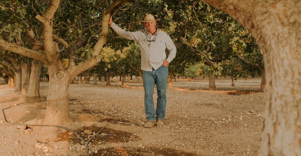 The well fixer  and I were standing at the edge of an almond orchard in the exhausted middle of California. It was late July, and so many wells on the