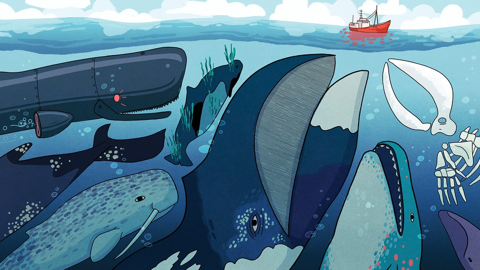 A group of whales and a robot whale crowd the sea. A red ship peacefully sails in the distance.