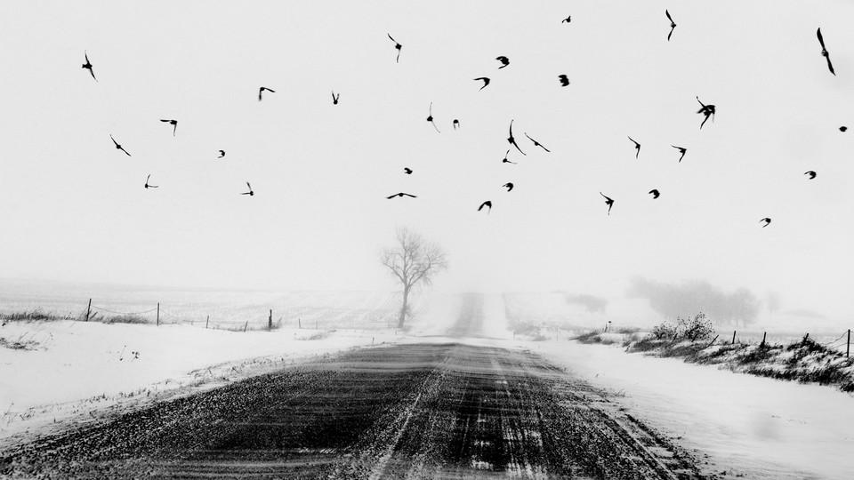 USA. Dewey County, South Dakota. 2016. Country road