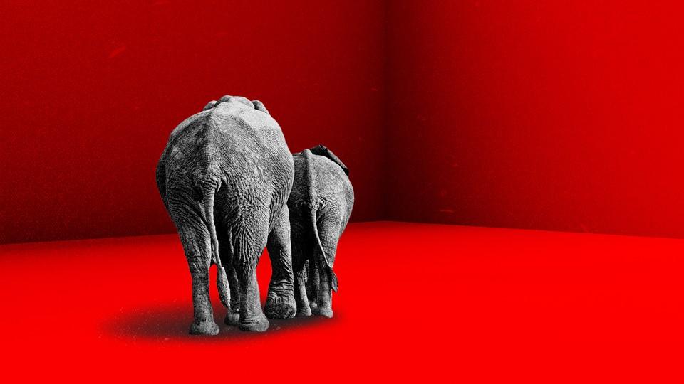 An illustration of two elephants walking away.