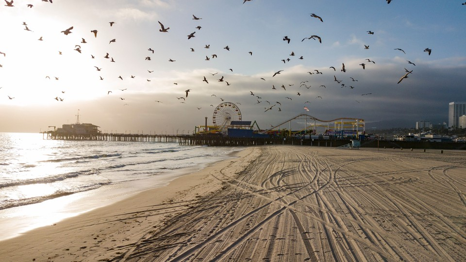 An empty beach with birds flying around