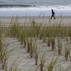 A figure walks along a beach with tufts of dune grass