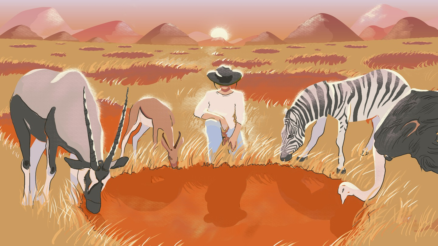 An illustration of a person, a zebra, an ostrich, and antelope standing around a fairy circle