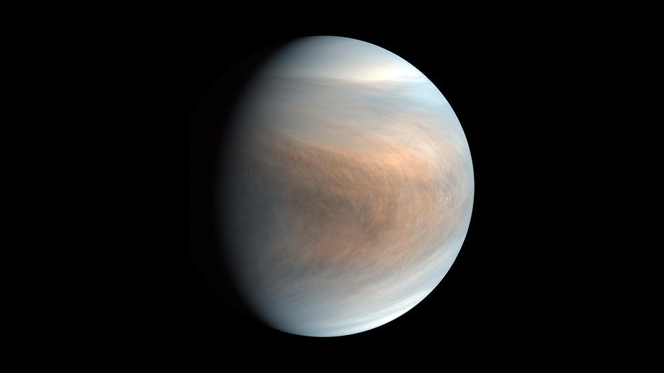 A false-color image of Venus