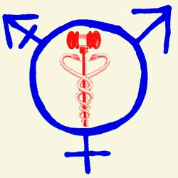 An illustration of a gavel, a caduceus, and male and female sex symbols