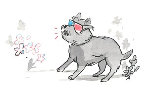 Toto from the Wizard of Oz wears 3-D glasses.