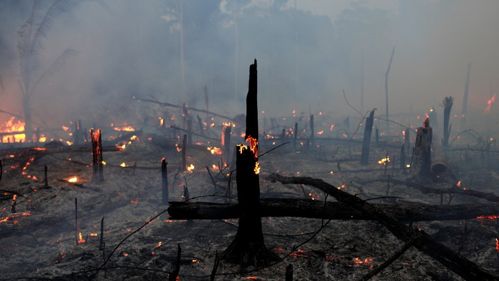 Fire burning in the Amazon