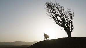 The silhouette of a person crouching next to a tree