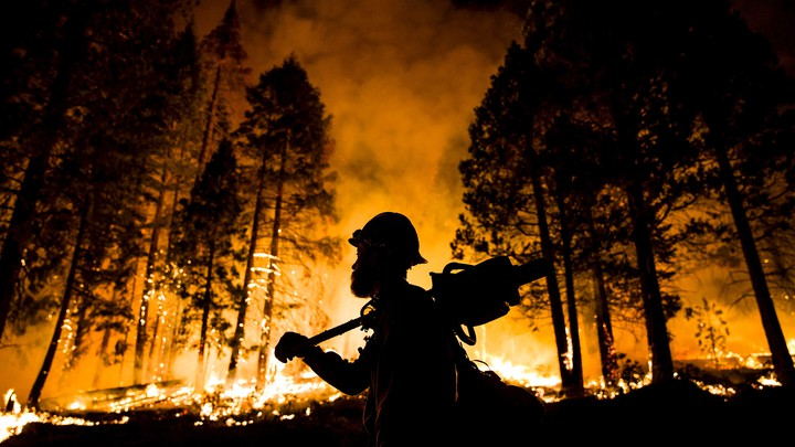 A firefighter watches a controlled burn in Sequoia National Forest in August 2015.