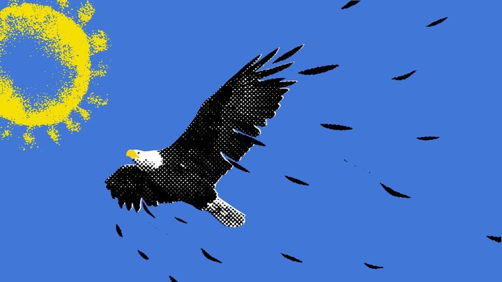 An illustration of an eagle shedding feathers soars towards the sun.