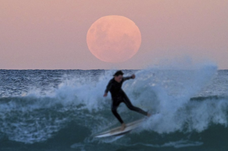 A surfer is seen as the moon rises over the ocean.