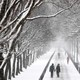 People walk down a path on the National Mall during a snowstorm.