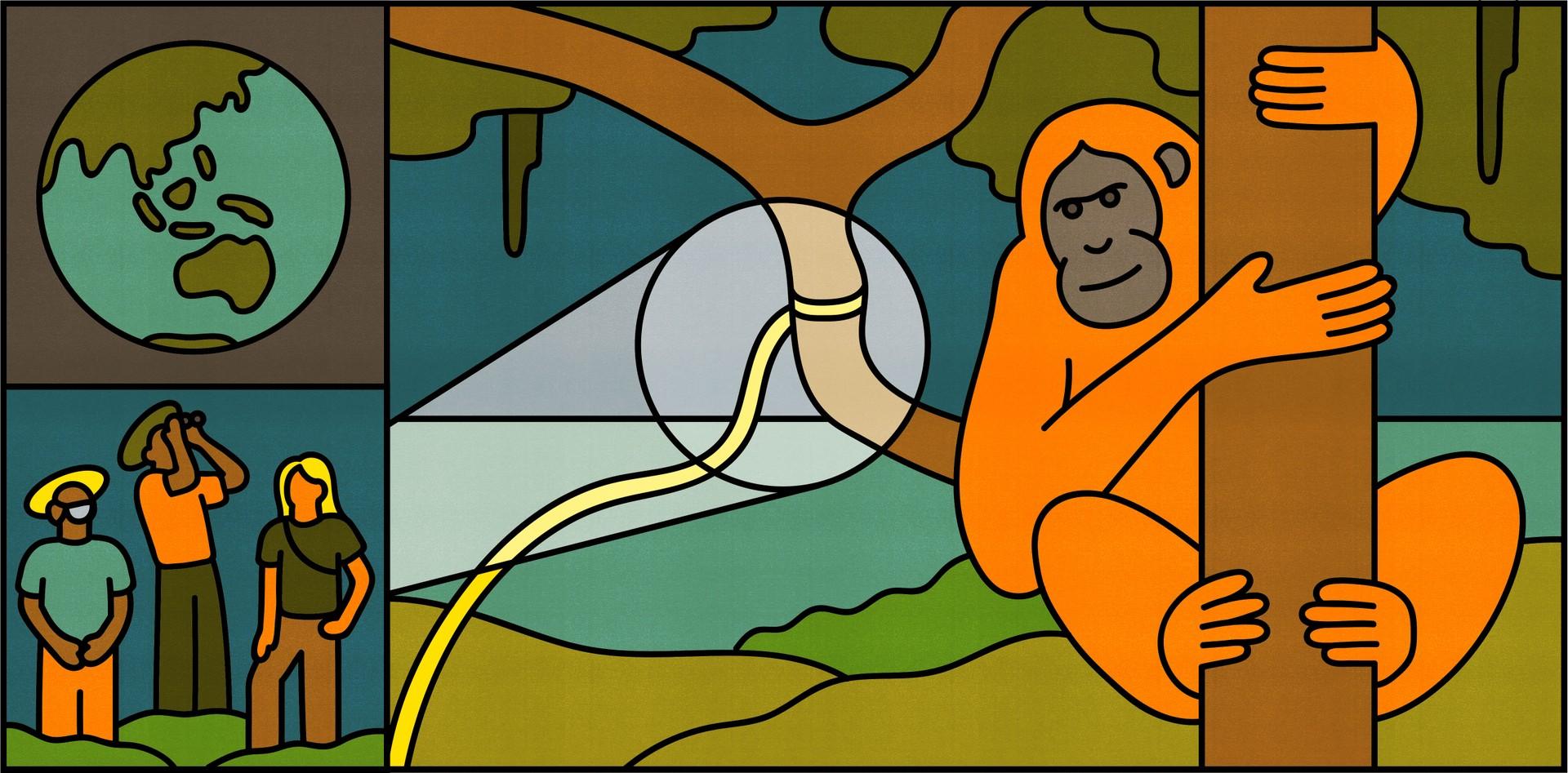 A globe, three researchers, and an orangutan