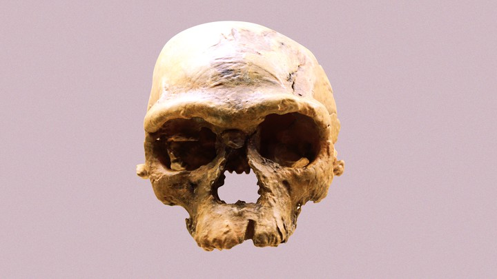 An ancient human skull from Jebel Irhoud