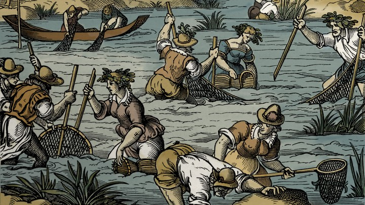 Medieval Overfishing Transformed Europe's Fisheries - The Atlantic