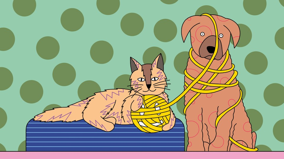 A cat and dog play with a ball of yarn in the shape of a smiley face.