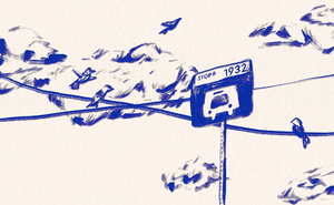 An illustration of birds sitting on wires crossing behind a bus-stop sign, in blue ink on a beige background
