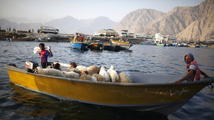 Iranian smugglers sit on a boat with their goods—sheep—as they navigate the Strait of Hormuz near Oman.