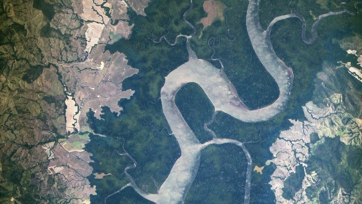 An aerial view of a river and a forest
