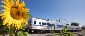 a photo of Denver's new  G Line train.