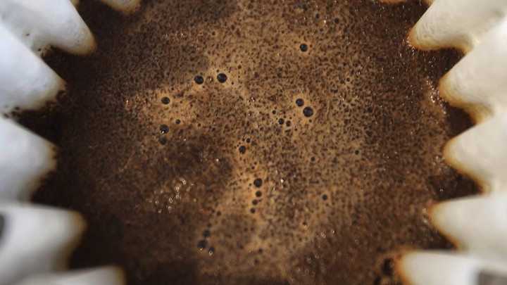 A closeup of wet coffee grinds in a filter
