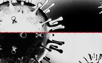 An illustration of a black and white coronavirus.
