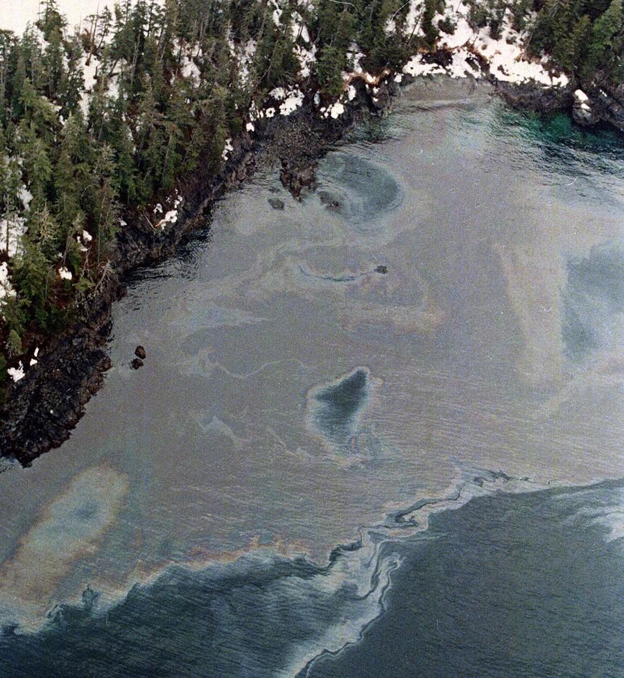 Tumpahan minyak di pantai Prince William Sound, Alaska Selatan, AS