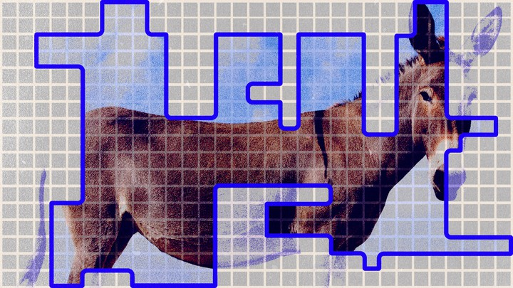 Image of a donkey overlaid on a gerrymandered House district