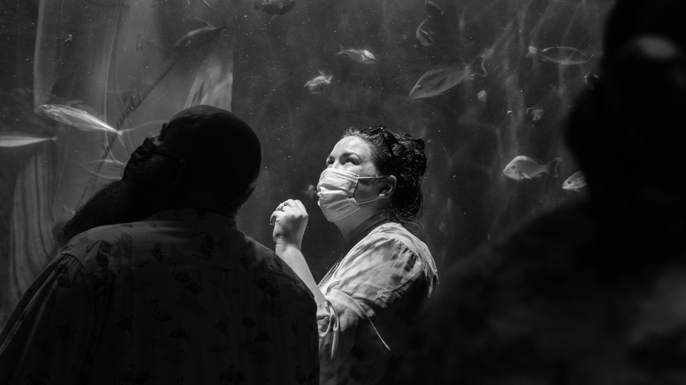 visitors in face masks at the Aquarium of the Pacific in July 2021