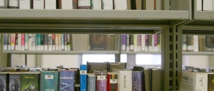 Books on a shelf of the Brooklyn Public Library's Bedford branch