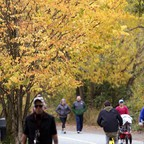 People walk and jog on a trail beneath trees with gold and yellow leaves.