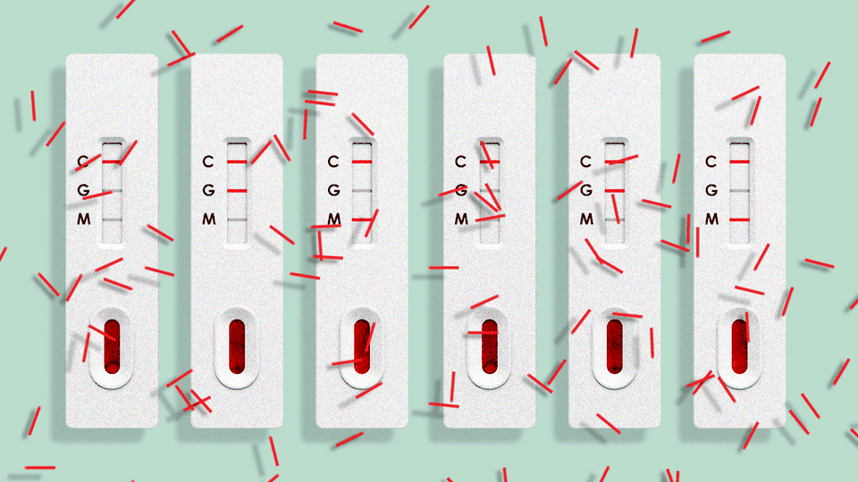 a row of six antibody tests showing different results