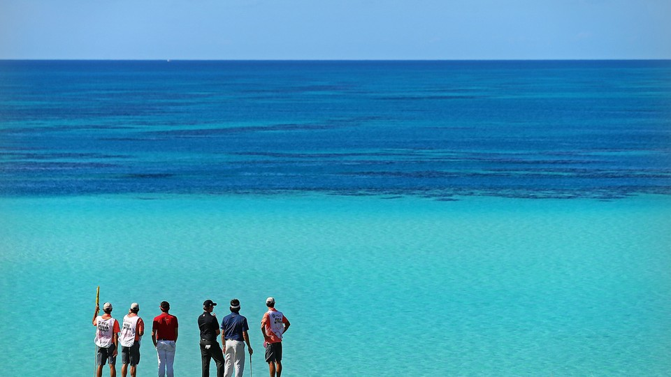 Professional golfers and their caddies study the view at a course in Bermuda.