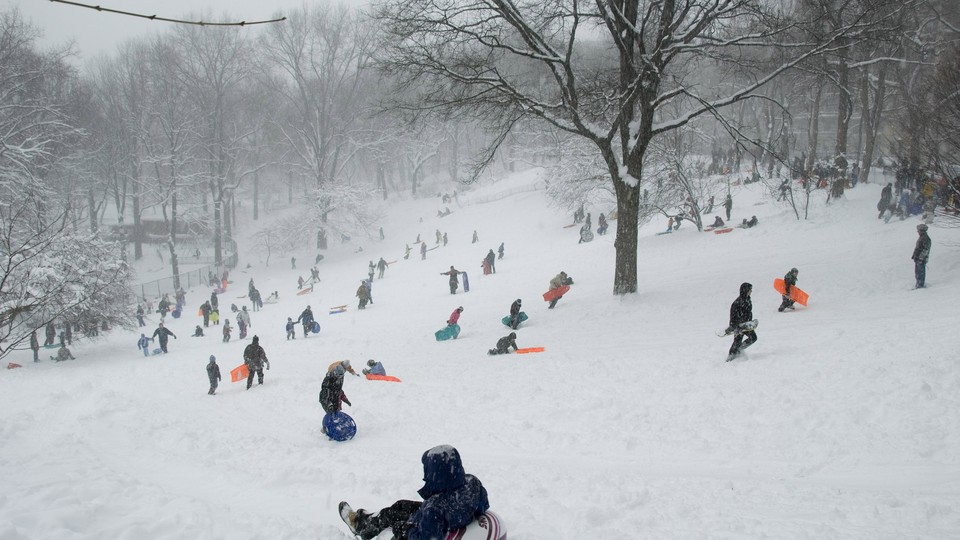 A sea of children sleds down a snowy hill.